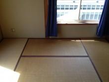 狭小住宅への採光とペットとの共生 東京都 和室施工前